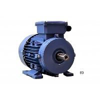 4 kW * / 1420 B3 IE1 GL 100 N4 with increased power